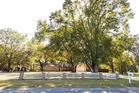 """ The Green"" getaway house in Wesley Chapel/ Tampa"