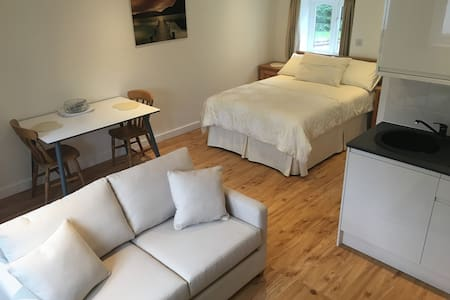 Double room with kitchenette, lounge and bathroom
