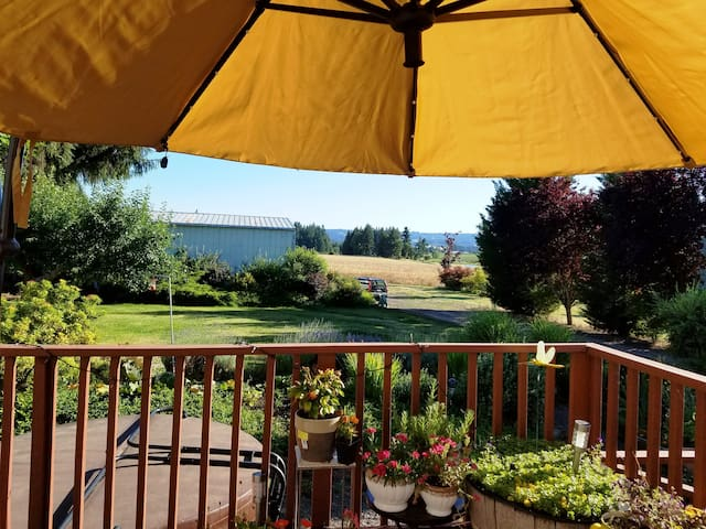 Deck view in July