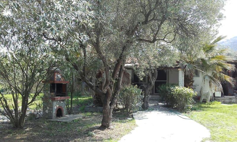 FER PRINOS - Prinos - House