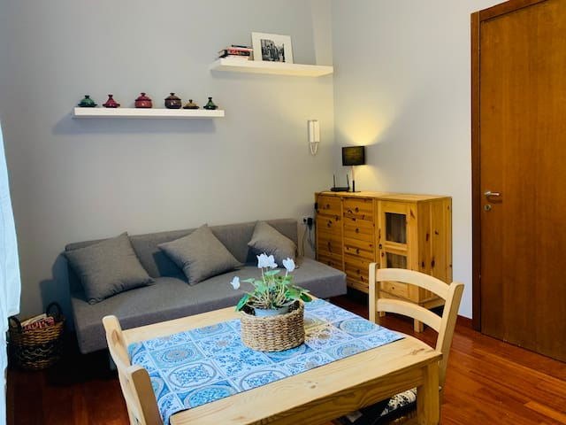 BeatingGaribaldi: cozy studio in the city center