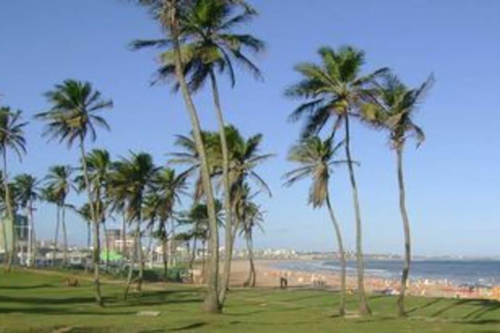 Em frente ao mar (in front of Jardim de Alah beach)