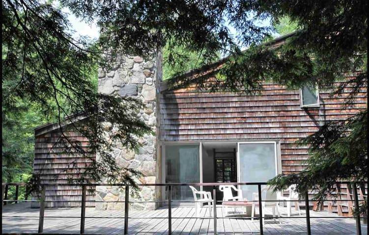 The Treehouse (Mount Snow)