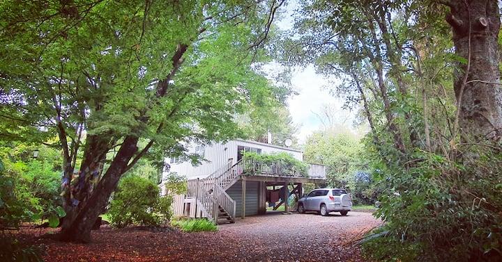 Nettys Tree-house