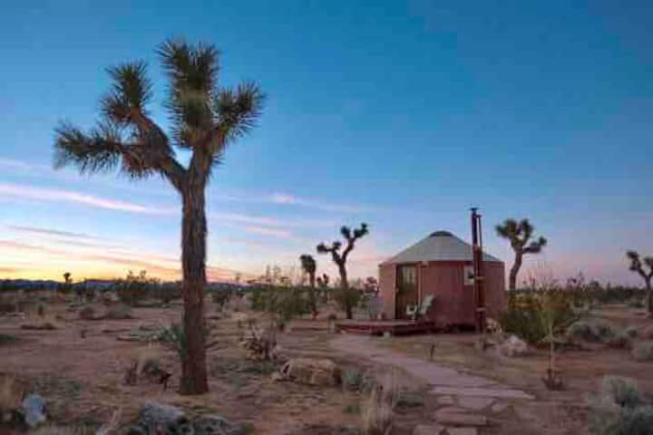 Stargazer Yurt on 40 Acres
