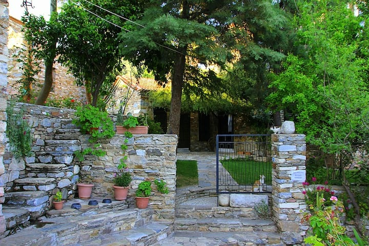 Wonderful Stone House in Antiquity,