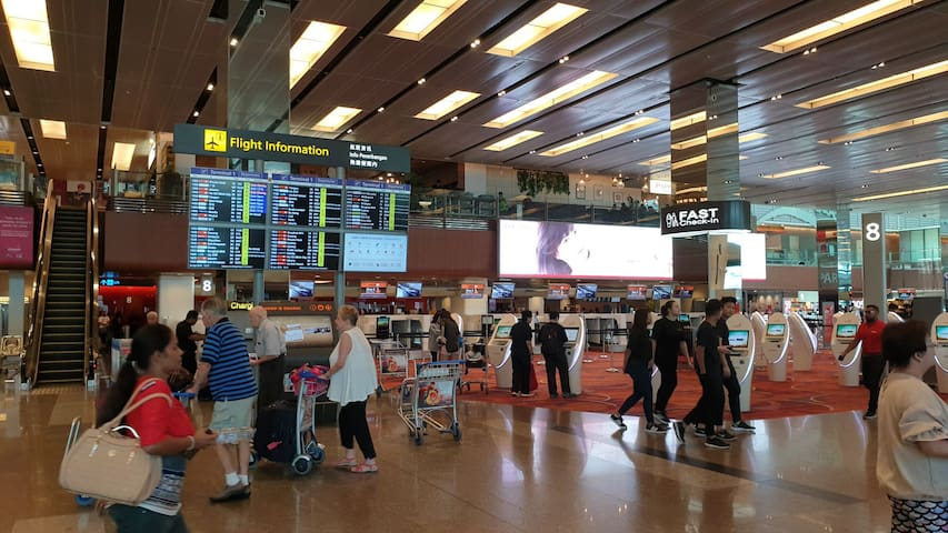 Changi Airport Terminal : 20 mins express bus