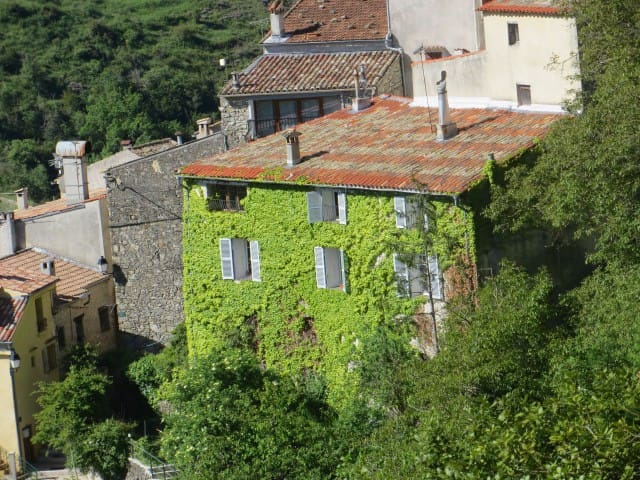 Old Mansion,Provence, close to NICE - Les Ferres - Apartemen