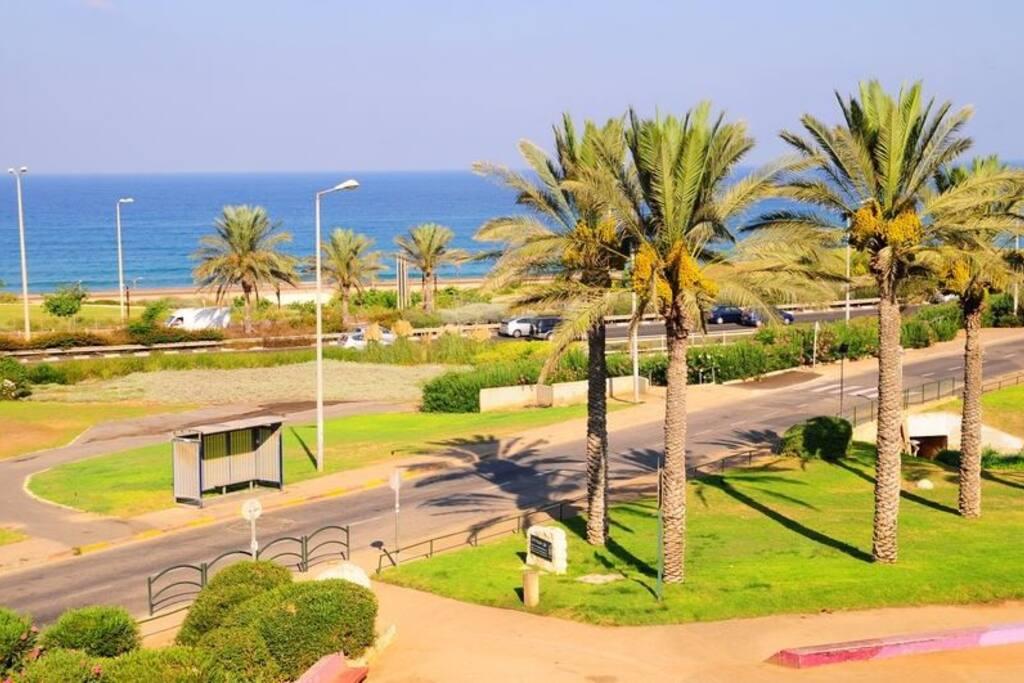 The park & the promenade