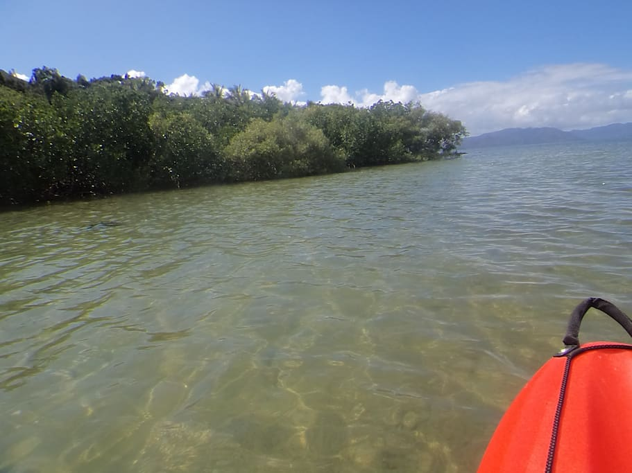 Explorez les îlots en canoë.