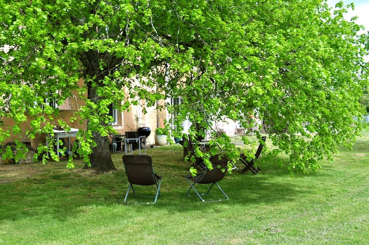 Chai restauré au milieu des vignes - Landiras - Casa