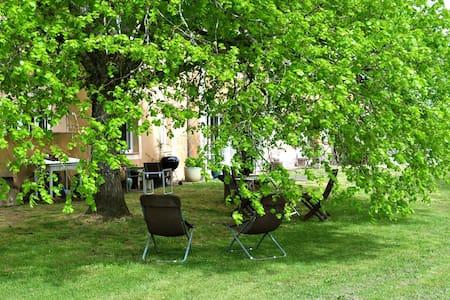 Chai restauré au milieu des vignes - Landiras