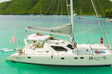 Braveheart crewed catamaran yacht - Tortola - Barca