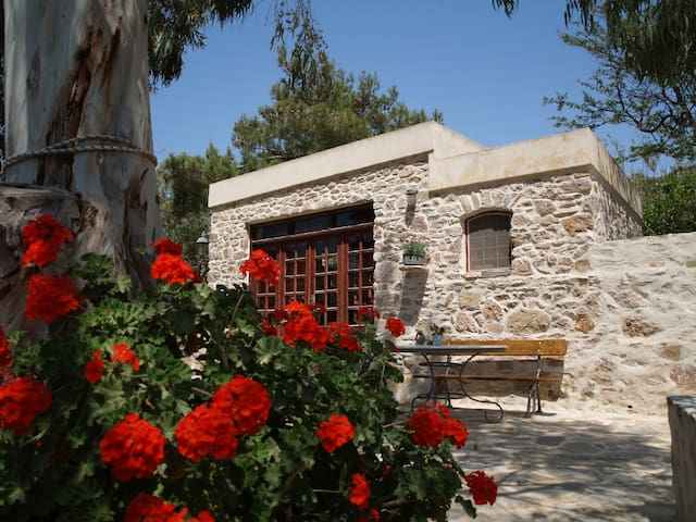 Traditional studio, farm holidays - Syros - Дом
