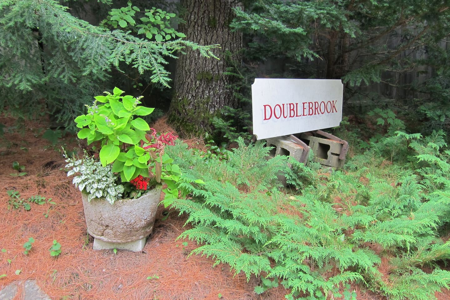 Welcome to Doublebrook Gardens and B and B