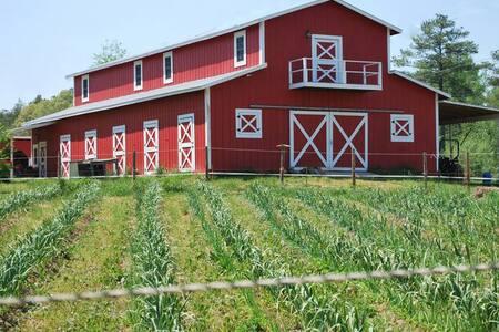 Live the farm life! - Efland - Квартира