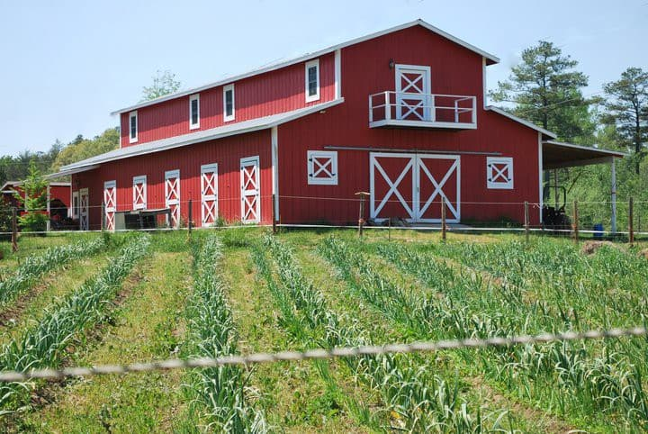 Live the farm life!