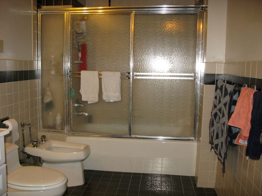 Large bathroom with shower/tub; toilet, sink and bidet.