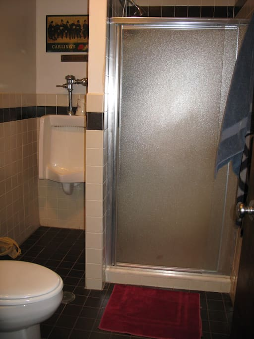 Second bathroom with stall shower; toilet, sink and urinal