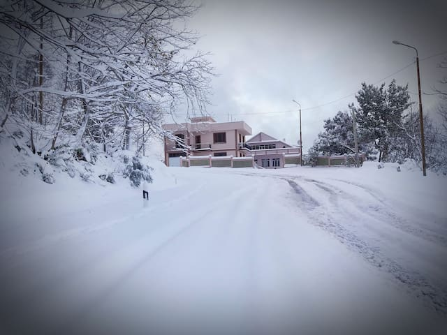 Batumi Guest house in the nature