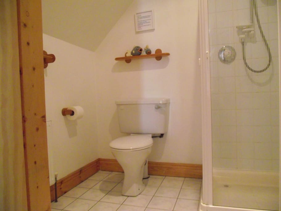 Private bathroom with shower next door to bedroom