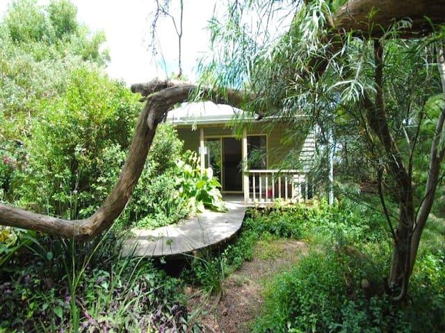 Private cottage in bush setting