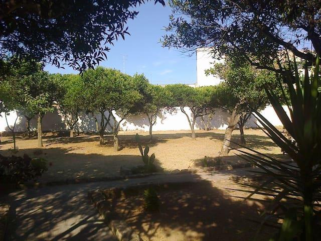 Casa Vacanze Corte Alipuna - Martignano