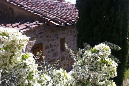 TOSCANA Maremma Scansano Casale in pietra a 400m - Scansano