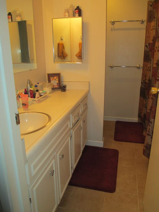 Spacious bathroom with new Italian tile floor and shower with tub. Great water pressure and settings to choose from.