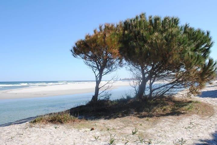 Sand  sea Sun of Sardinia - Budoni - Penzion (B&B)