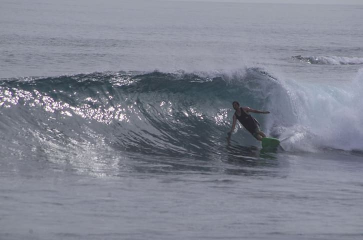 Surf Camp Siberut   mentawai islands
