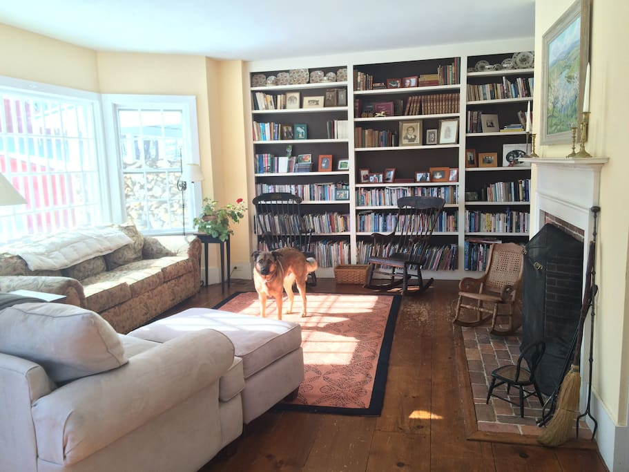 Living room with an extensive book collection, heavy on children's literature.
