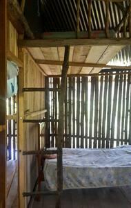 Centro de perma cultura y relajación en la selva