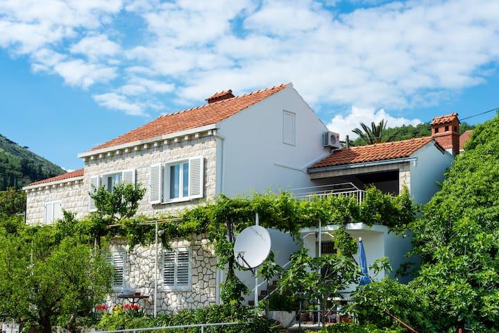 Apartment Lucija near Dubrovnik - Orašac - 公寓