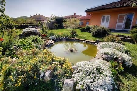 Apartments Malija Izola Istria  - Malija
