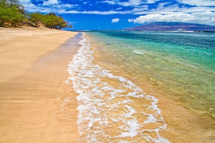 Isn't this why you're coming to Maui?