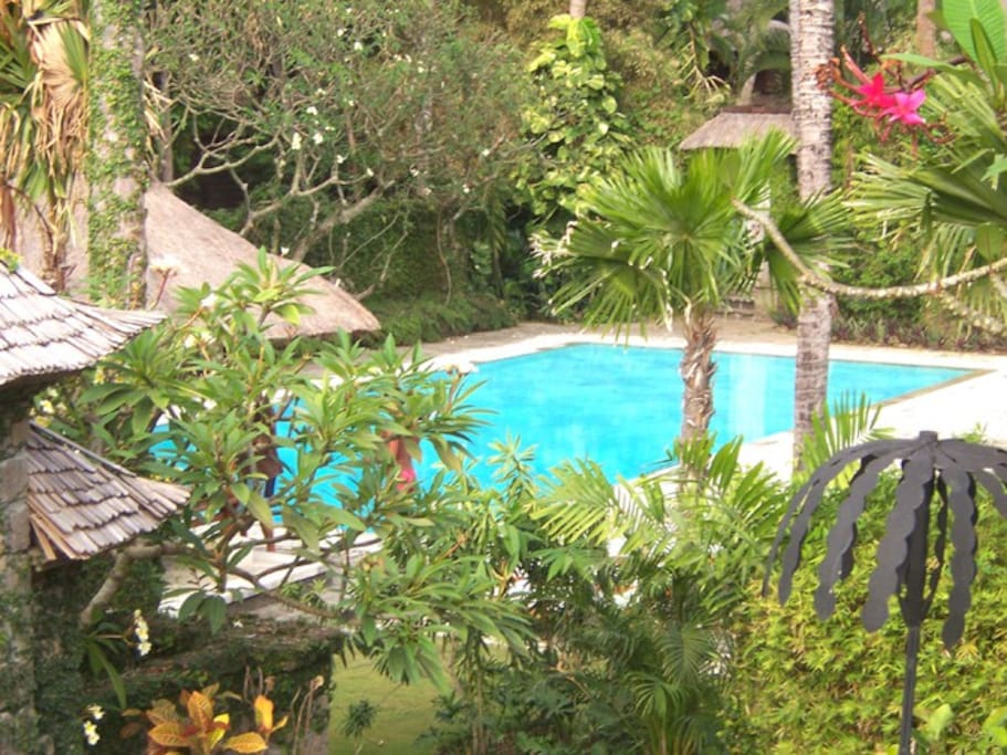 View of swimming pool and some garden