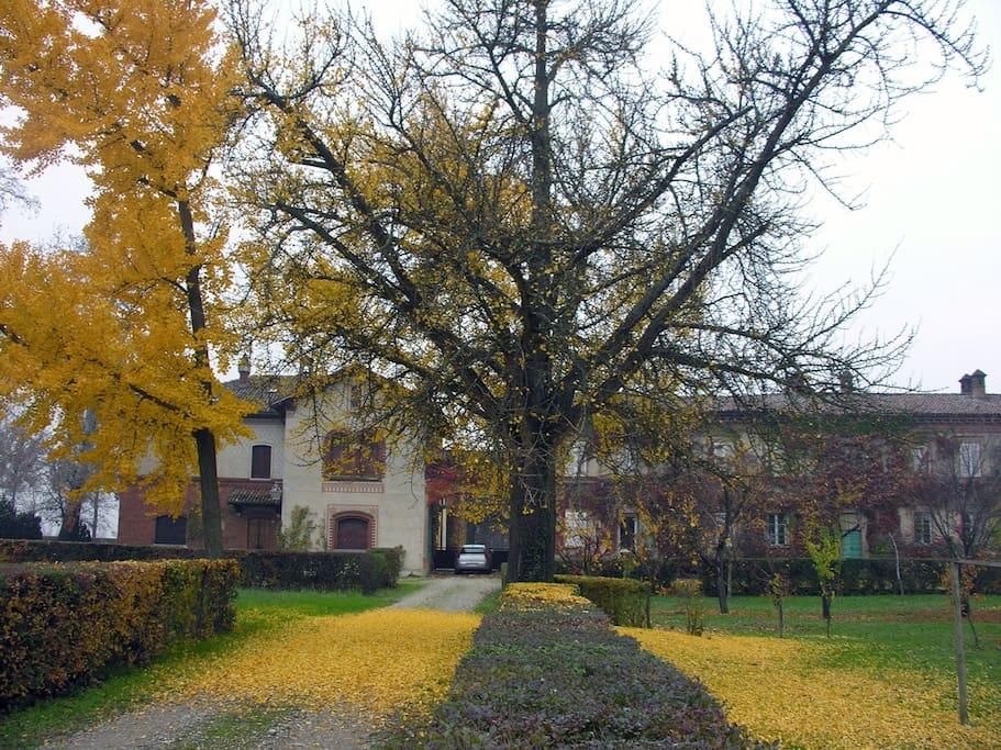 La Marchesina  in autunno