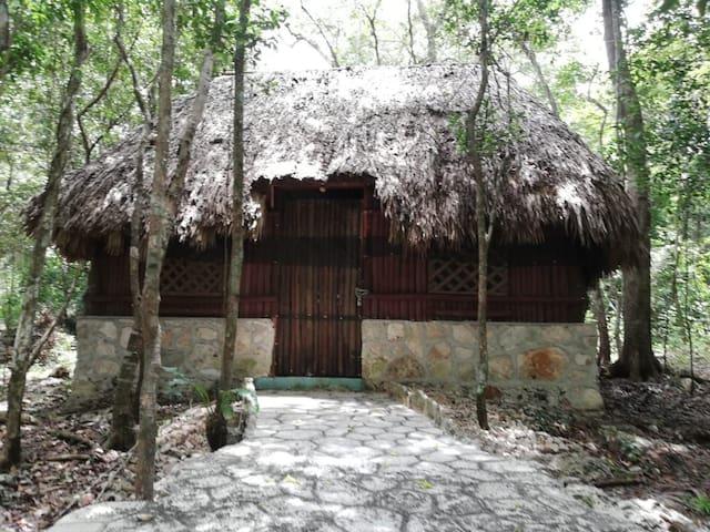 Kinha cabañas natura life
