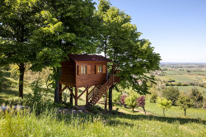 Aroma(n)tica TreehouseinMonferrato - San Salvatore Monferrato - Hus i træerne