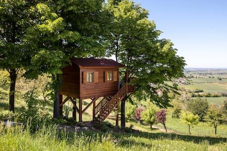 Aroma(n)tica TreehouseinMonferrato - San Salvatore Monferrato - บ้านต้นไม้