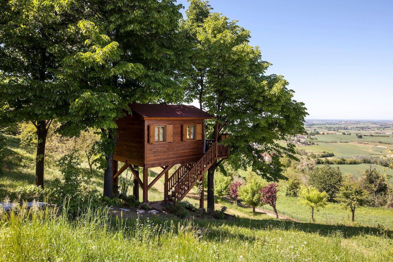 Aroma(n)tica Treehouse