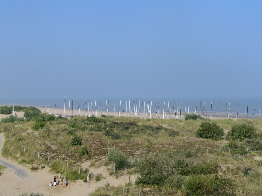 The sailing club SYCOD, just 500m away; catamaran, windsurfing, kitesurfing, beachsailing, SUP,....