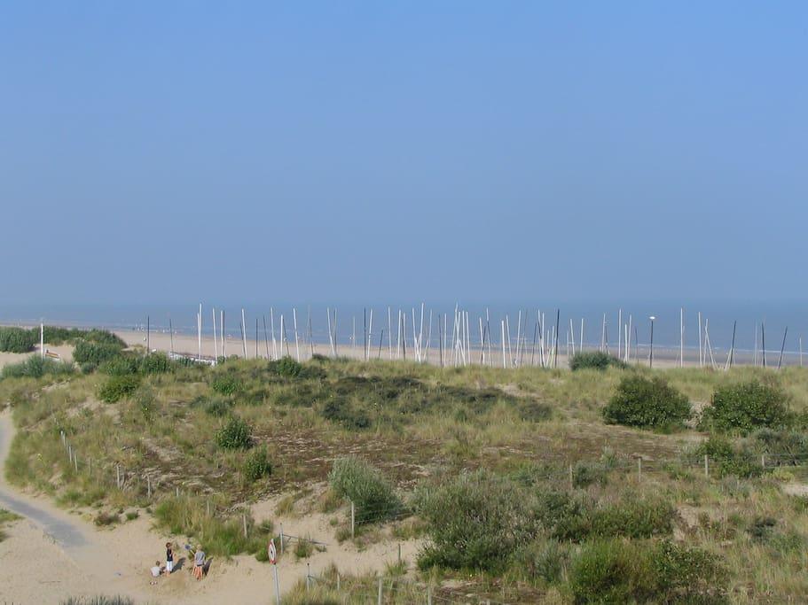 The sailing club SYCOD, just 500m away; catamaran, windsurfing, kitesurfing, beachsailing, SUP,....