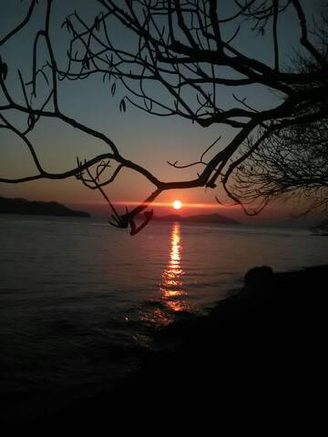 Isla Bejuco Wildlife Camping - Bejuco - Pulau