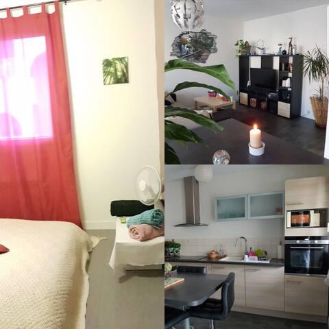 Chambre privée dans appartement F3