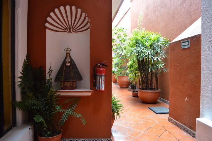 Senior Suite in Downtown Oaxaca - Oaxaca - Apartment