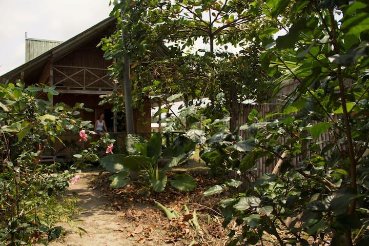 Balsasurf Lodge on Mompiche beach - Mompiche - Dům