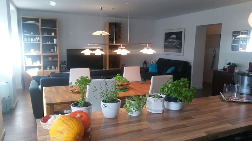 Full flat with 3 rooms. 3-9 people  + Breakfasts.