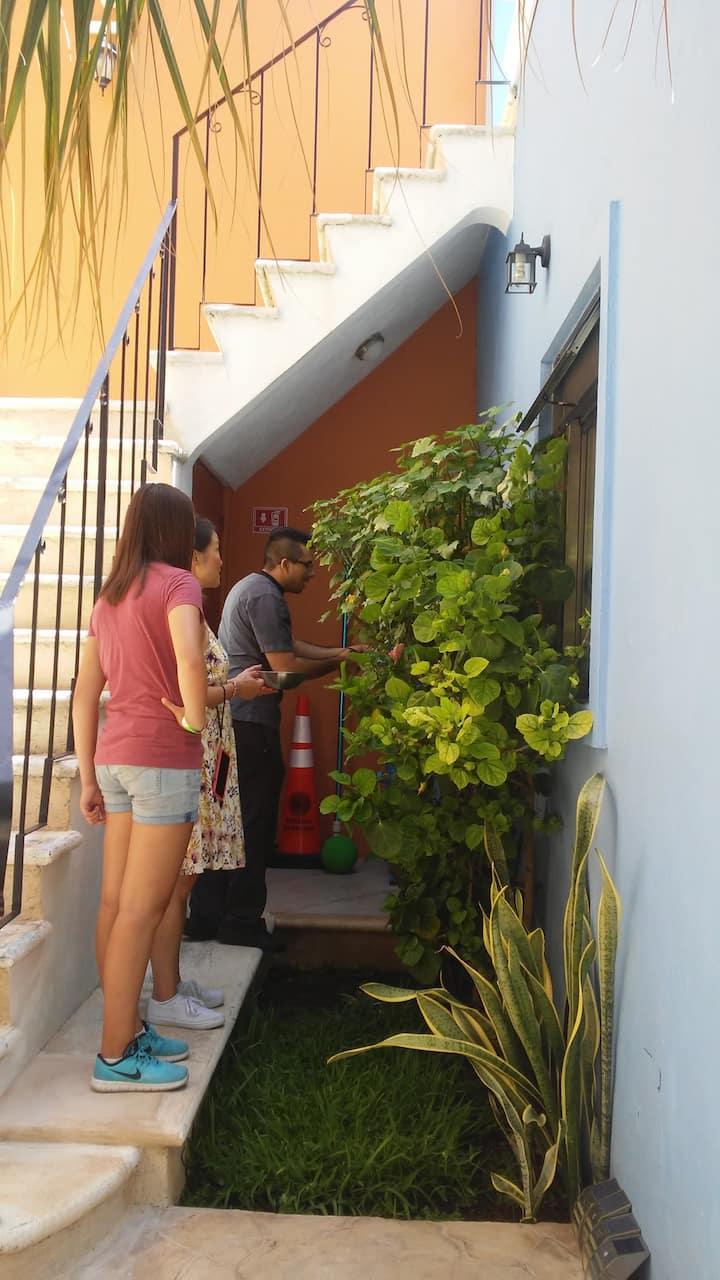 Sharing Tradion visting garden